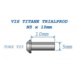 Ti Bolts for disk M5x10 (6 pc.)