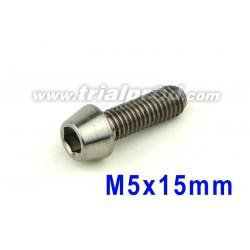 Titanium bolt M5 x 15mm