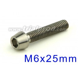 Titanium bolt M6 x 25mm