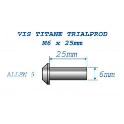 Vis titane M6 x 25mm